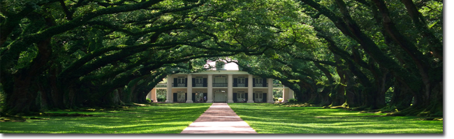 Georgetown Sc Plantation Tours