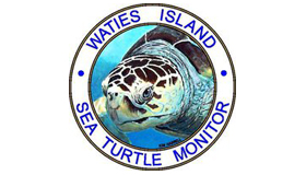Waites Island Sea Turtle Monitor